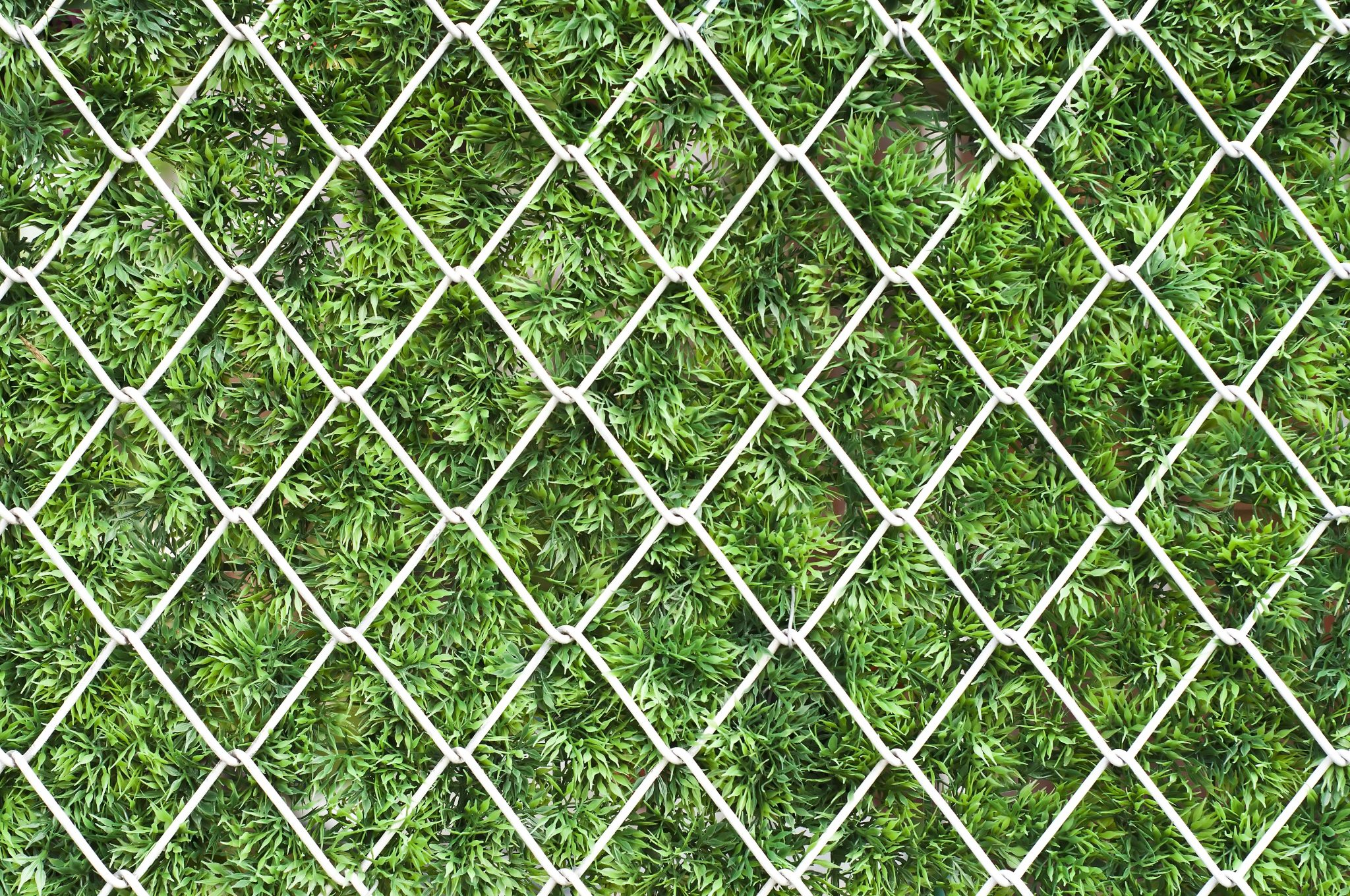 Improve Privacy - Okanagan Fences | Quality Chain Link Fencing