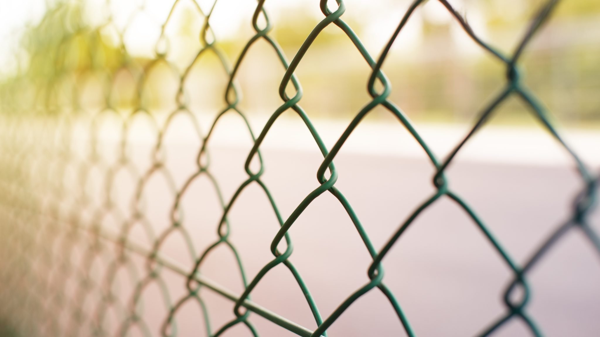 Picture of: 10 Chain Link Fence Privacy Ideas Ways To Improve Your Fence Look