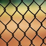 Fencing on a Budget: Tips To Save Money